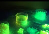Hidrogel Fluorescente